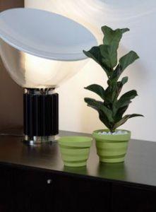 Vertigo - D.18xh13,5cm - Verde Acido - Codice: 80E2437VA
